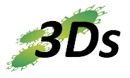 3Ds (UK) Limited